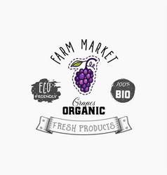 grapes bio sticker and eco products grapes web vector image