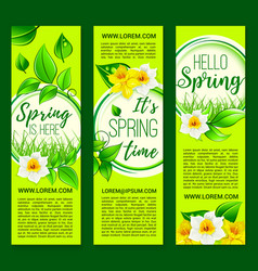 Hello spring springtime flowers banners vector