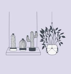 houseplants in macrame hangers and swing vector image