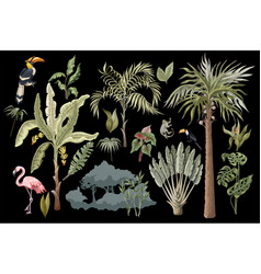 Jungle animals flowers and trees isolated vector