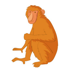 proboscis monkey icon cartoon style vector image
