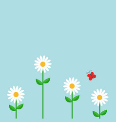 red butterfly white daisy chamomile set cute vector image
