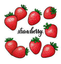 set beautiful cartoon red strawberry with vector image