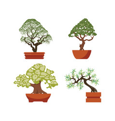 set colorful bonsai trees in pots vector image