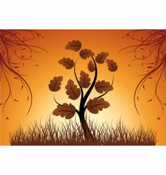 tree sunset vector image