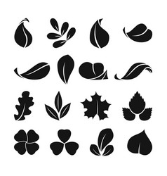 black monochrome symbols of spring leaf vector image vector image