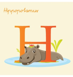 H for hippo vector image vector image