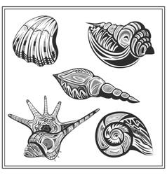 Set black and white seashells vector image