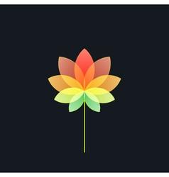 Bright Multicolored Translucent Flower on Black vector