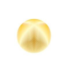 gold glowing circle vector image