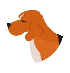 Pedigree dog head beagle vector