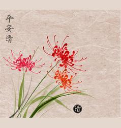 three red chrysanthemum flowers on vintage paper vector image