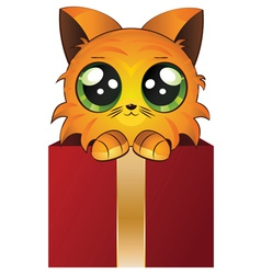 Red kitten in a box vector image vector image