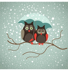 Two cute sad owls in wintertime vector image vector image
