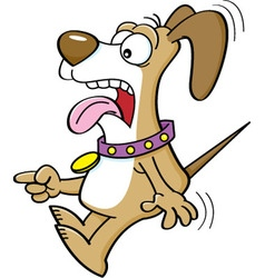 Cartoon of a scared dog pointing vector image