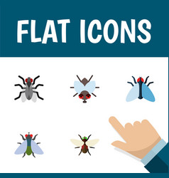 Flat icon fly set of bluebottle fly housefly and vector