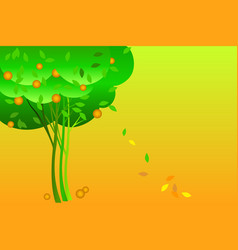 fruit trees orange tree vector image