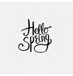 Hello Spring Concept Graphic Design vector image