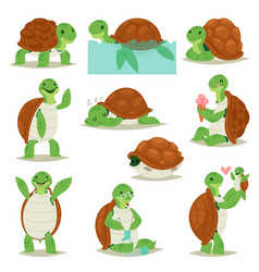 Turtle cartoon seaturtle character swimming vector