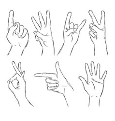 black outline hands vector image