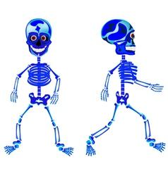 Two walking skeletons vector image