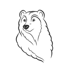 Bear head logo template mascot emblem vector image