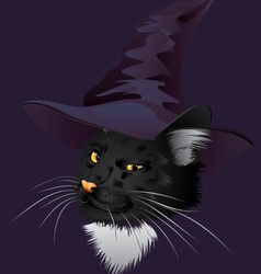 Kitty Witchy vector image vector image