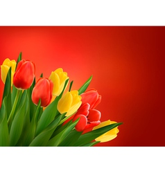 Holiday background with colorful flowers vector image