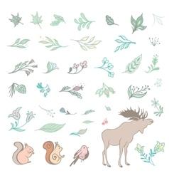 Set of Summer Forest Design Elements vector image vector image