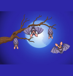 adorable bat cartoon sleeping and fly at night wit vector image