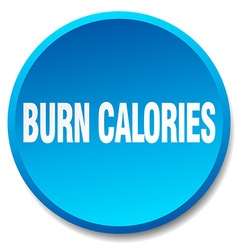 Burn calories blue round flat isolated push button vector