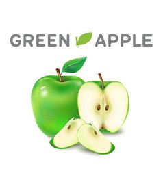 fruit green apple white background image vector image