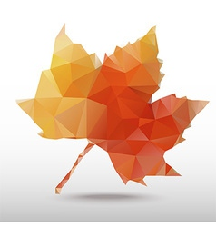 Maple vector