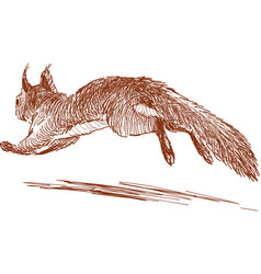 Running squirrel vector