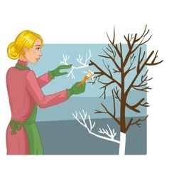 Woman is whitewashing of trees vector