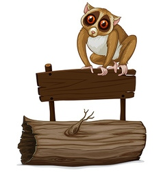 Loris standing on wooden sign vector image vector image