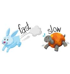 Rabbit runs fast and turtle runs slow vector image
