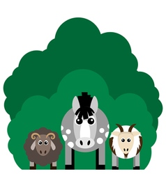 farm animals Horse sheep goat vector image vector image