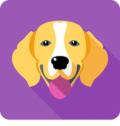 Dog Beagle icon flat design vector