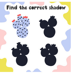 find correct shadow activity page for kids vector image