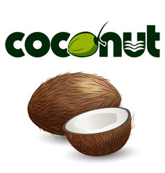 fruit coconut white background image vector image