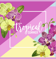 hello summer tropic design tropical orchid flowers vector image