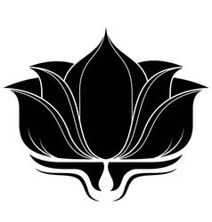 Lotus Flower vector