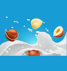 milk splash and hazelnuts vector image