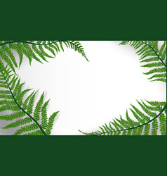 tropic leaves background with copyspace for text vector image