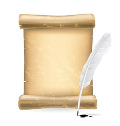 white feather and old scroll vector image