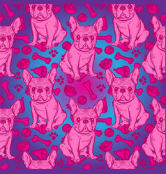 Cute pattern with french bulldog home dog vector