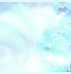 blue flower orchid background vector image vector image