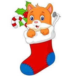 Cartoon animal cat in the sock christmas vector