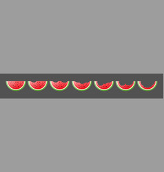 flat ripe watermelon pieces set vector image